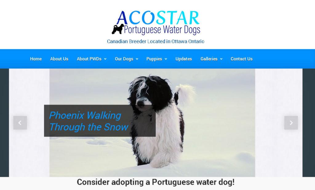 Acostar WordPress Website Redesign and Website Maintenance